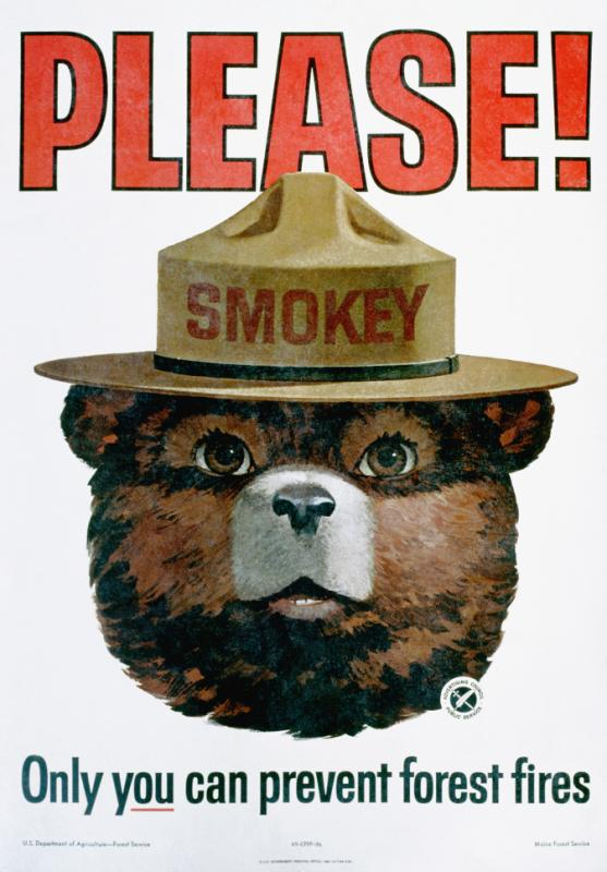 1965 --- Please! Only You Can Prevent Forest Fires Poster --- Image by © K.J. Historical/CORBIS