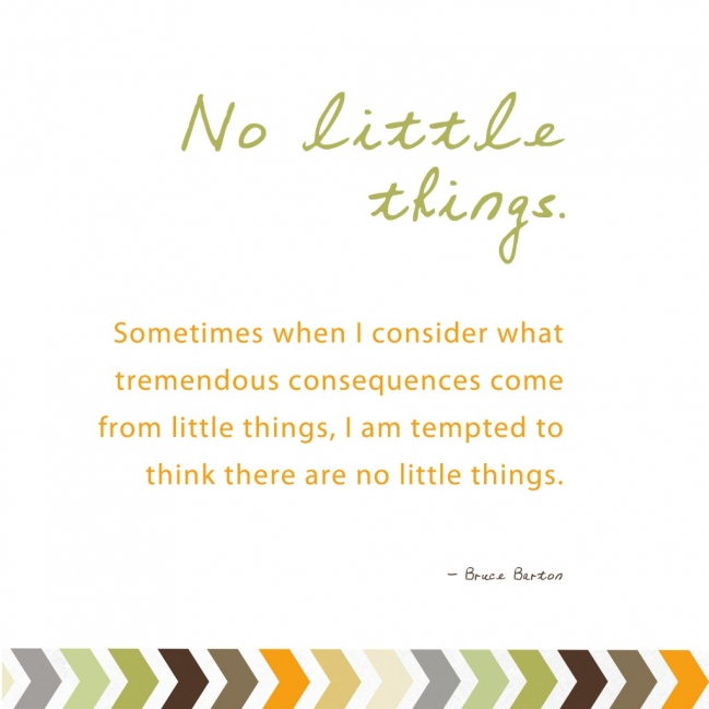 263644-quotes-about-little-things